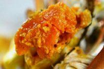 为啥有一些螃蟹的蟹黄又稀又苦?挑选螃蟹需谨慎
