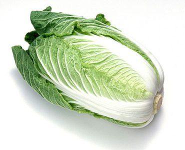 青口大白菜