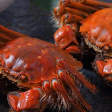 螃蟹蒸多少分钟才能熟