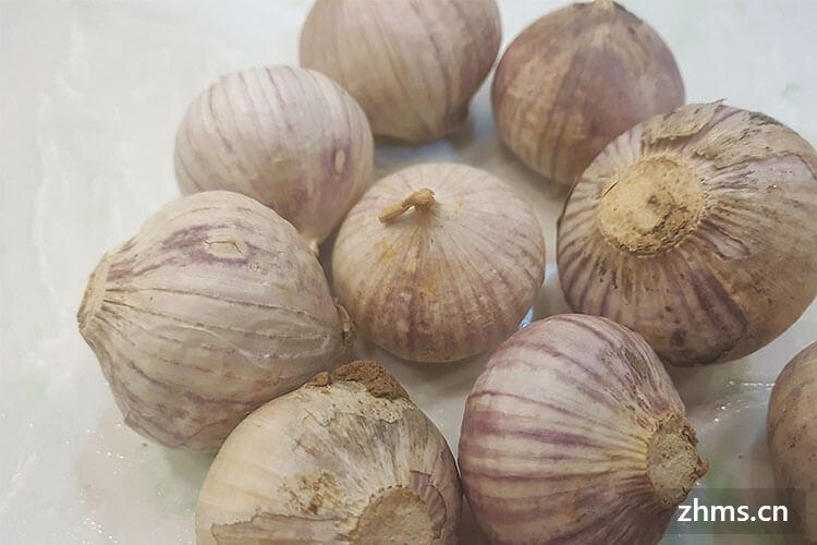 大蒜怎么保存不发芽