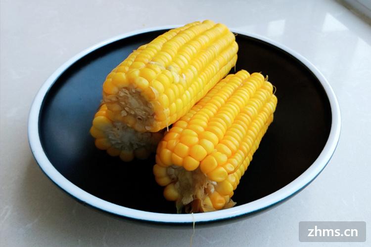 冷水下锅的玉米煮多久