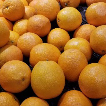 柳丁是什么