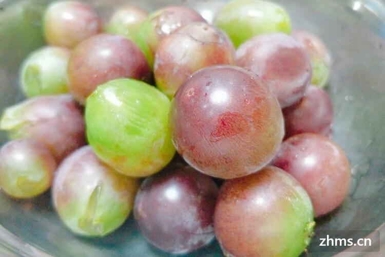 葡萄是酸性还是碱性
